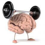 The 12 Best Brain Supplements for Optimal Mental Fitness