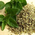 12 Massive Benefits of Taking a Daily Dose of Oregano Oil