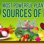 25 Most Powerful Plant-Based Sources of Iron