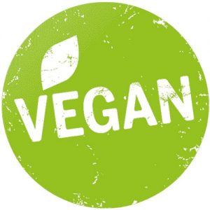 what is a vegan