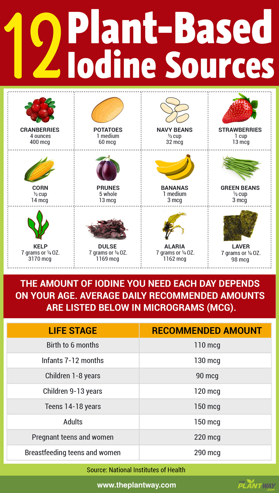 plant-based-iodine-sources