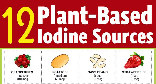 vegan-iodine-sources