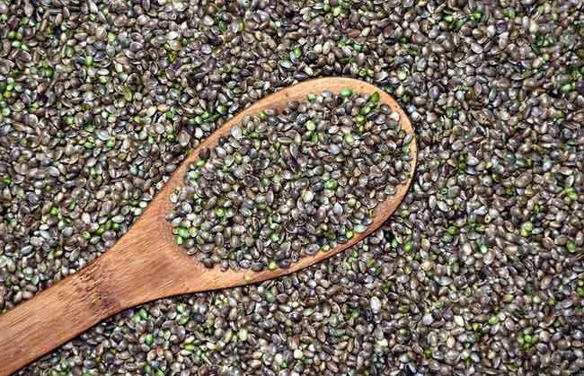 hemp-seeds-omega-3