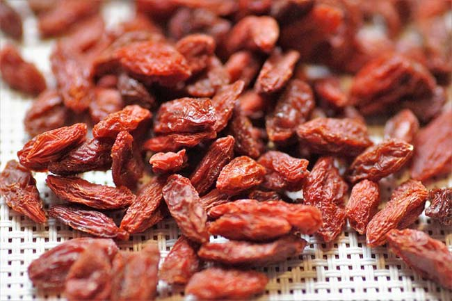 12 Goji Berry Benefits Wolfberry