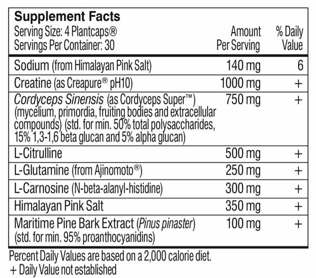 best-vegan-pre-workout-supplement