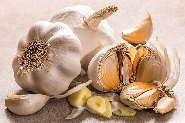 garlic-fights-cancer
