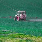 Is Glyphosate Safe? Here's What the Science Says About this Popular Herbicide