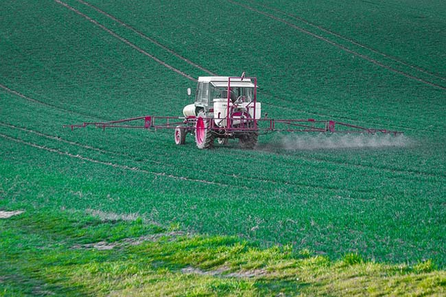 is glyphosate safe