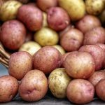 Resistant Starch: A Guide to Nature's Super Carb!