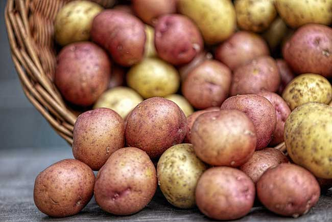 potatoes-resistant-starch