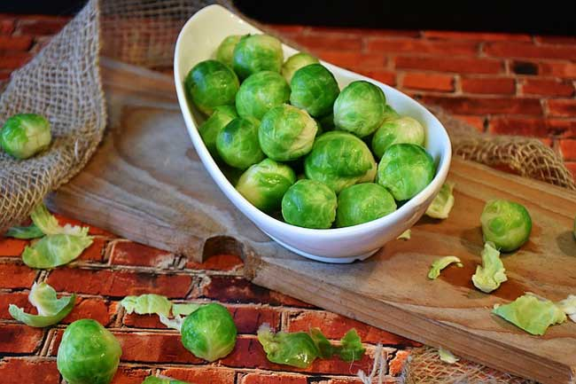 brussels-sprouts-vegan-sources-choline
