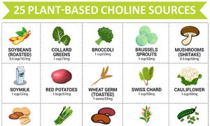 plant-based-choline-sources-thumb