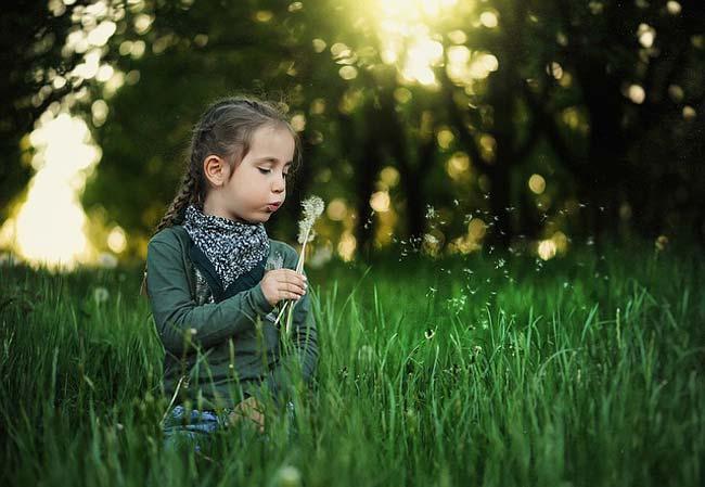 dandelion-health-benefits