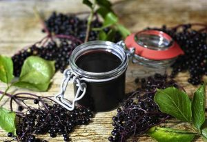 elderberry-for-flu