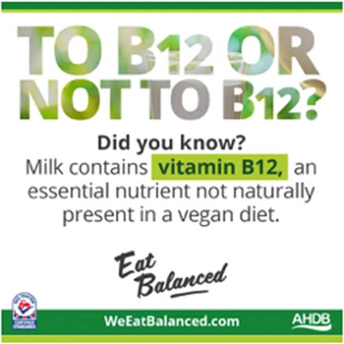 b12-vegan-diet
